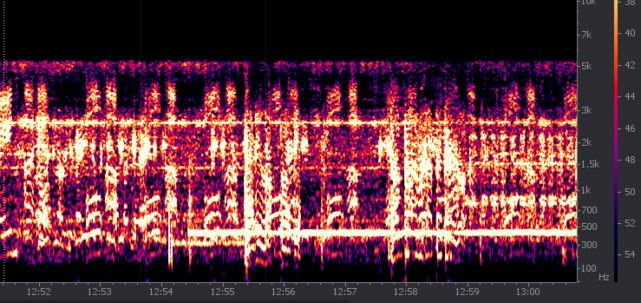 widmo z próbkowanego z częstościa 11 kHz zapisu CVR