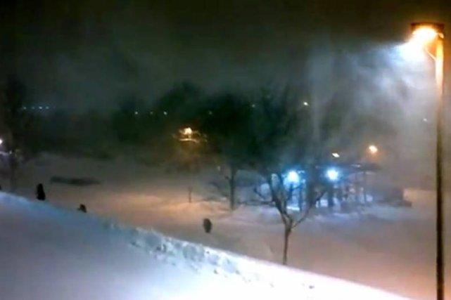 Burza śnieżna w USA: spadło 40 cm śniegu; fot. natemat.pl