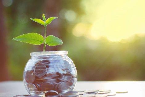 Jak pomnożyć swoje oszczędności?