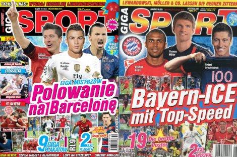 Polak w Niemczech może wydawać najwyżej niszową gazetę hobbystyczną