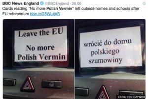 W Wielkiej Brytanii miała miejsce seria antypolskich wystąpień. Brytyjski poseł z polskimi korzeniami zdecydowanie je potępił.