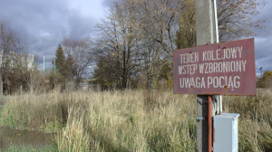 Torowiska porosłe trawą i krzakami, jak w Czarnobylu.