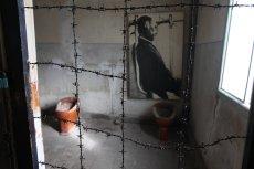 W obozie Stutthof zginęło ok. 65 tys. więźniów. Był jednym z najdłużej działających obozów nazistowskich podczas II wojny światowej.