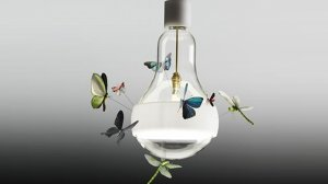 Lampa Johnny B. Butterfly projektu Grahama Owena
