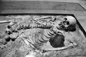 Wampir z Sozopolu (Bułgaria). Żelazne ostrze pługa miało powstrzymać go przed powstaniem z grobu. Na terenie Polski odkryto wiele podobnych pochówków.