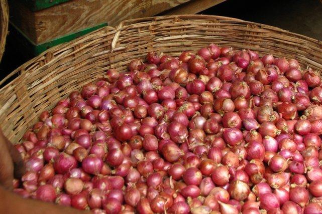 Cebule na targu w Indiach