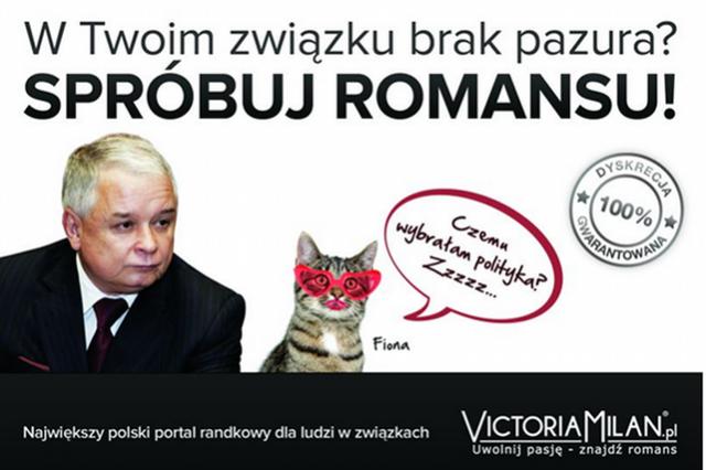 portal randkowy za free Jastrzębie-Zdrój