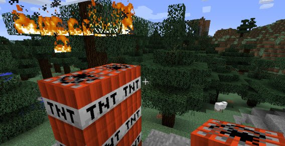 Owca, dynamit i płonące drzewo. Zero logiki, ale nie przejmuj się tym