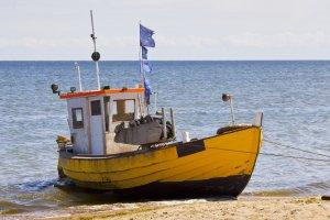 Polscy rybacy chcą zamknąć Bałtyk do połowów.