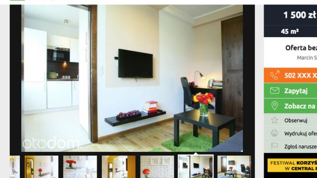 Stylowe mieszkanie do wynajęcia w Toruniu to koszt 1500 złotych.