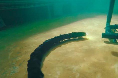 W najbliższym czasie tego typu maszyny zostaną dosłownie i w przenośni wrzucone na głęboką wodę