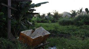 Tacloban - Philippines