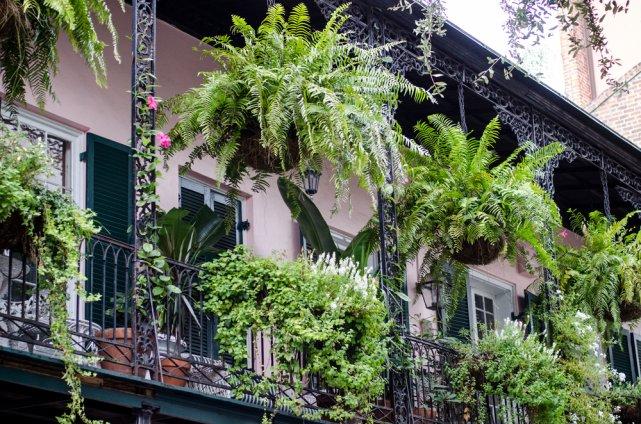 [url=http://shutr.bz/1qIVF0w] Ukwiecone balkony French Quarter [/url]