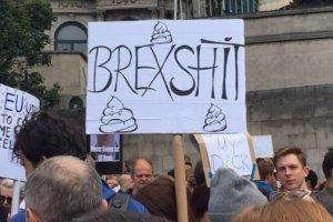 Brexshit - hasło dzisiejszej demonstracji w Londynie.